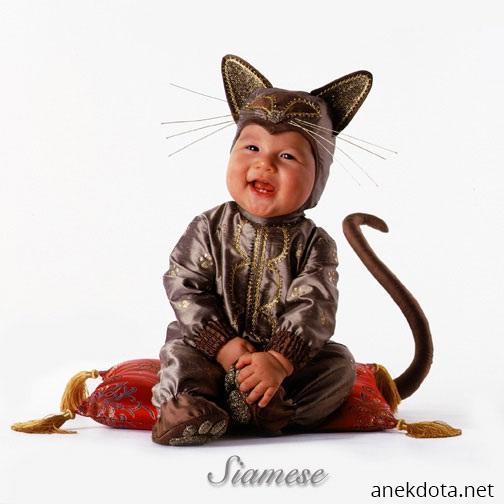 Костюм котёнка для мальчика своими руками